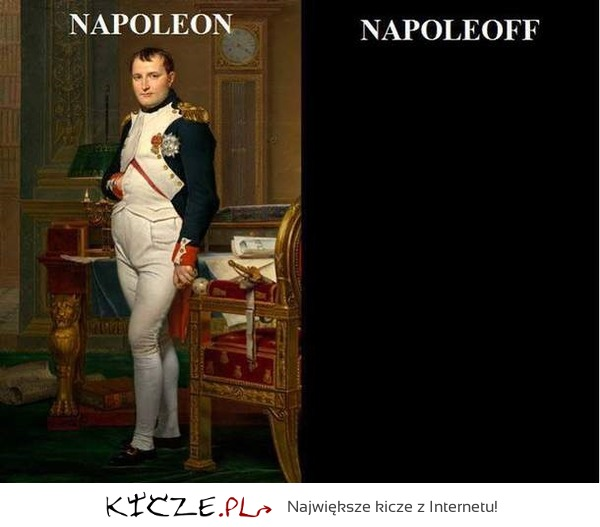 Napoleon on off