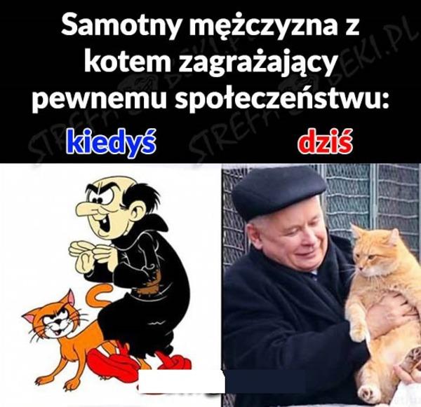 Kicze Pl Facet Z Kotem